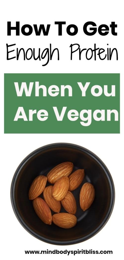 vegan protein sources pin