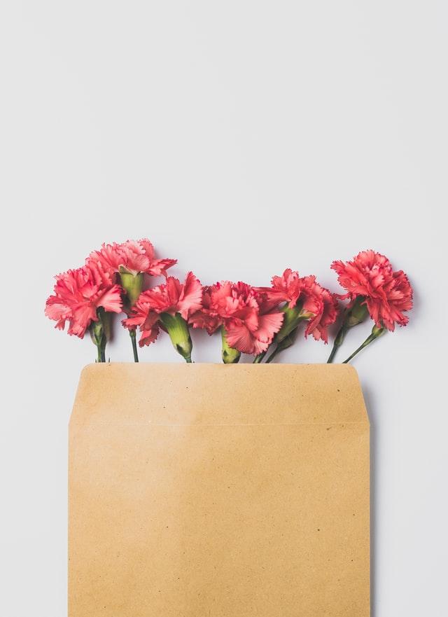 carnations in brown bag